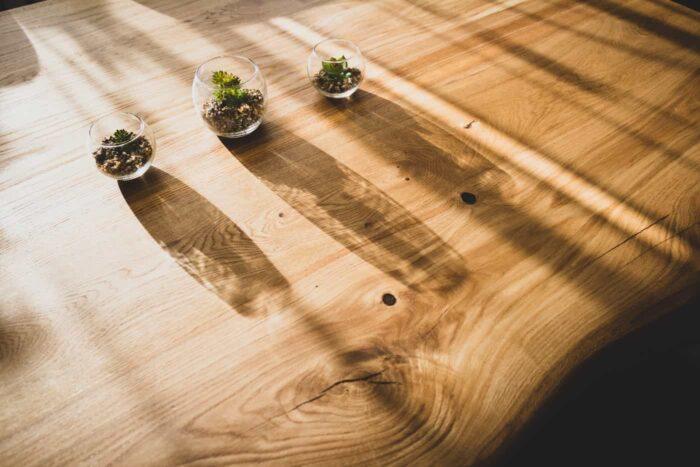 puit tammepuit